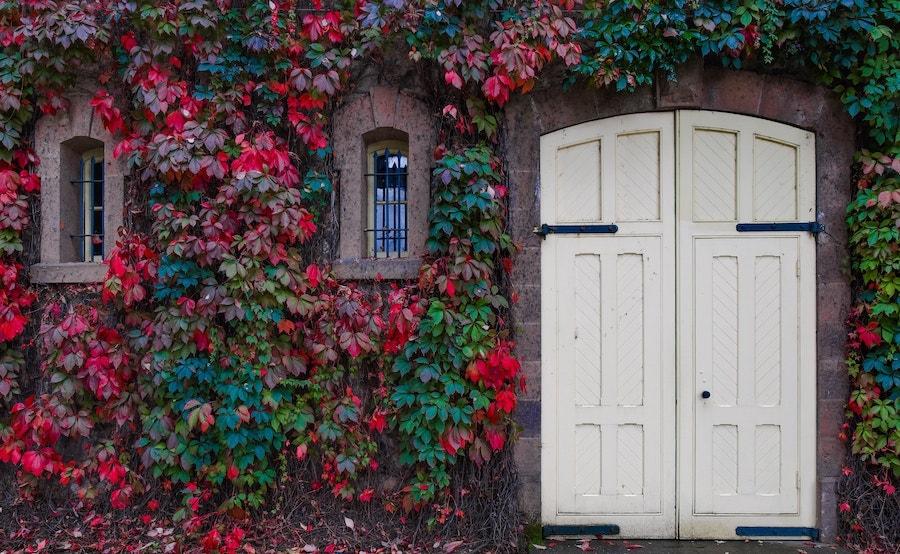 מאחורי הדלת הסגורה